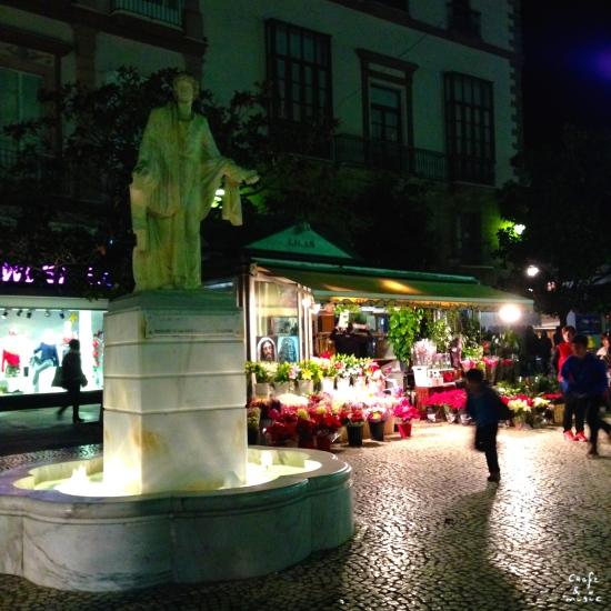plaza-de-las-flores-noche