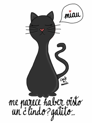 gato negro - supersticiones