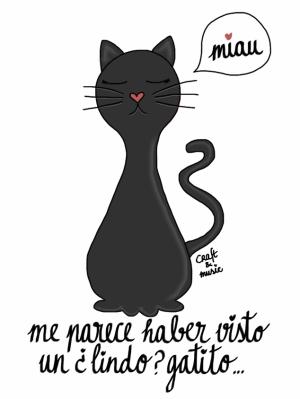 gato negro - supersticiones